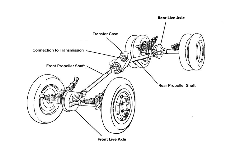 Live Axle Diagram