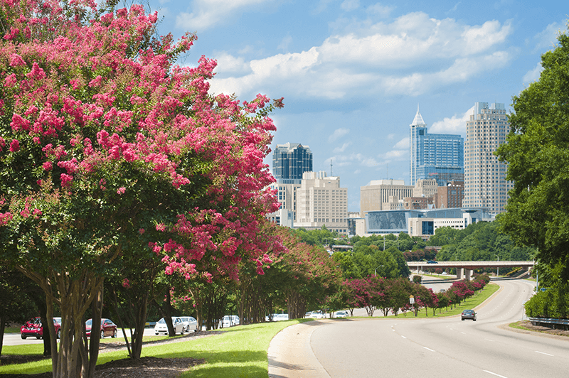 raleigh nc - The Best and Worst U.S. Cities to Drive In